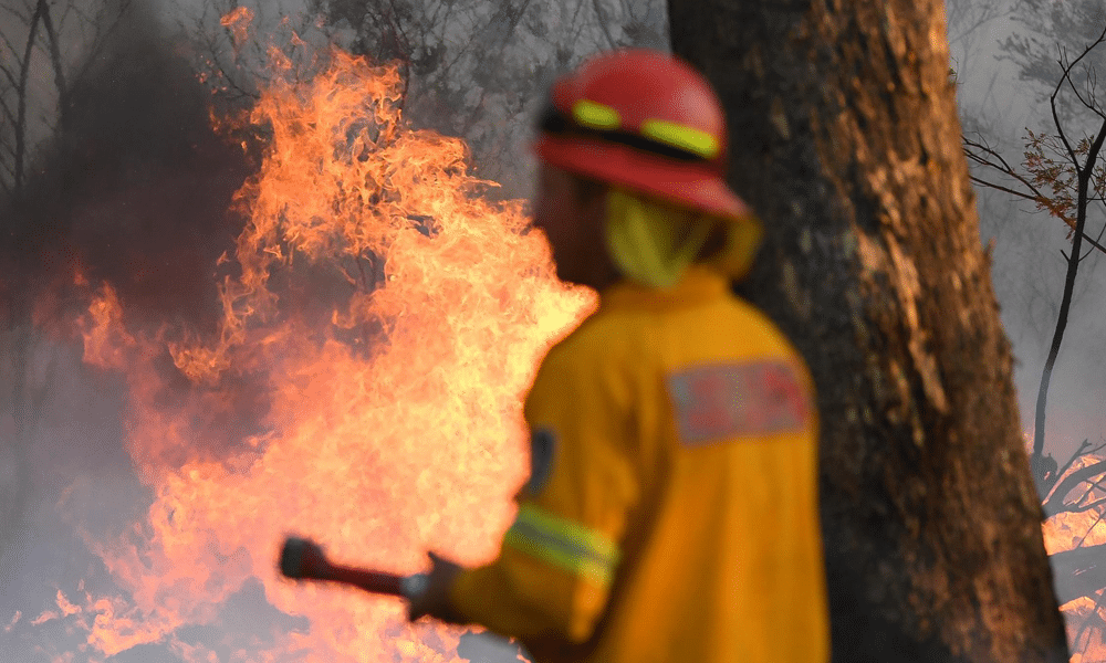 https://www.hartpartners.com.au/wp-content/uploads/2019/12/HartPartners-BUSHFIRE-ASSISTANCE-1.png